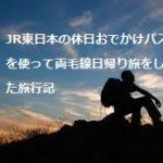 JR東日本の休日おでかけパスを使って両毛線日帰り旅をした旅行記